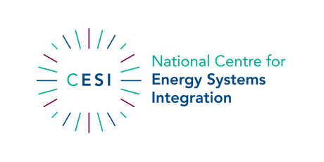 CESI Workshop - Modelling decarbonised heat for low-carbon communities tickets