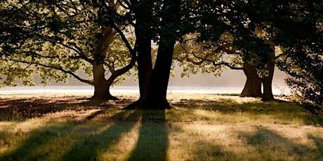 Hampstead Heath Circular - Beginners walkers tickets