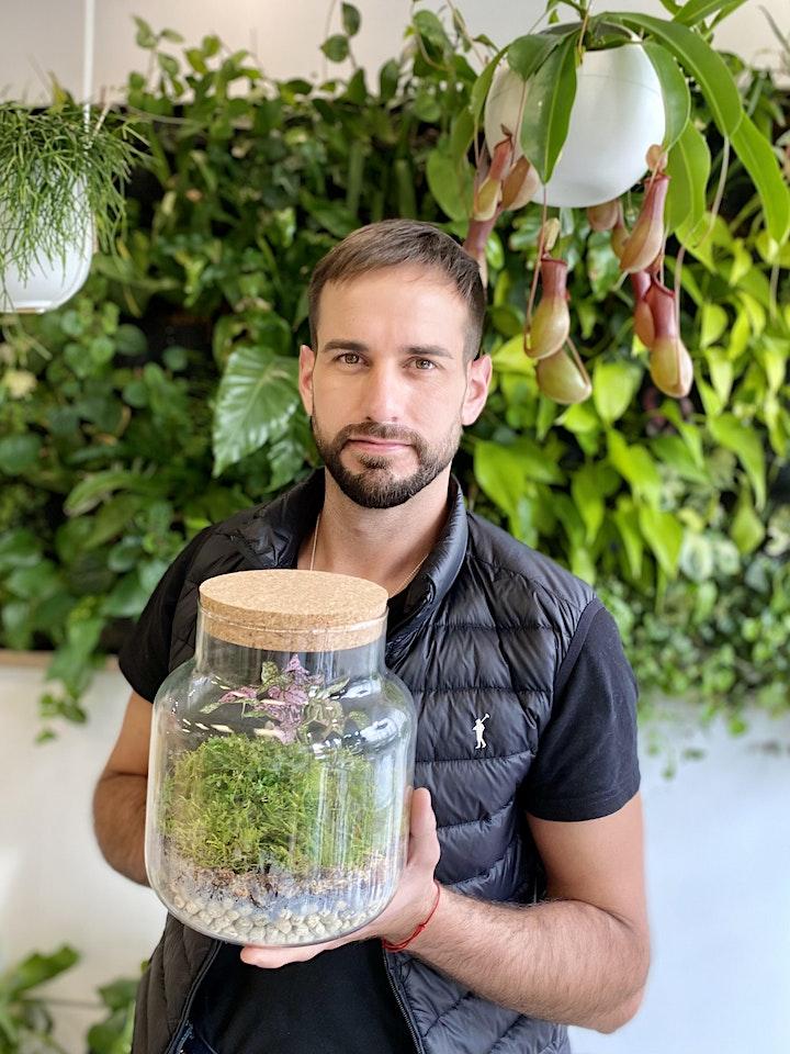 Imagen de CREA TU TERRARIUM CERRADO con plantas subtropicales