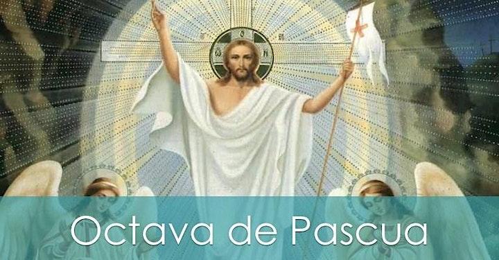 Misas de Semana Santa y Octava de Pascua image