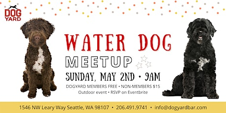 Water Dog Meetup at the Dog Yard tickets