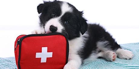 Adult Webinar: Pet First Aid tickets