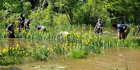 June 26 Volunteer Event at Kenilworth Aquatic Gardens tickets