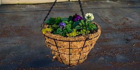 Pansy Hanging Basket Workshop tickets