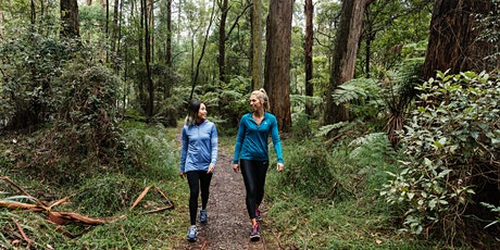 Dandenong Ranges Park Walk tickets