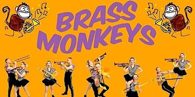 Brass Monkeys!