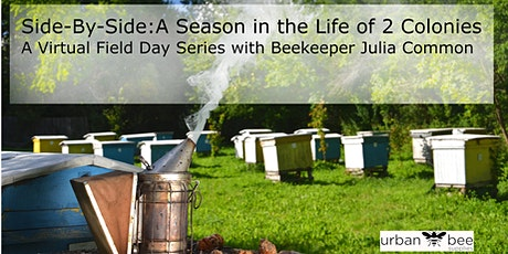 Side by Side: A Season in the Life of 2 Colonies - Virtual Field Day Series tickets