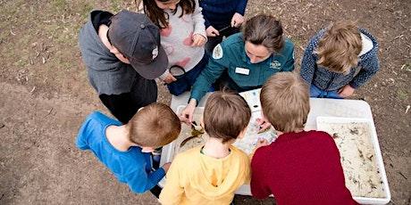 Junior Ranger Minibeast Discovery- Shepparton Regional Park tickets