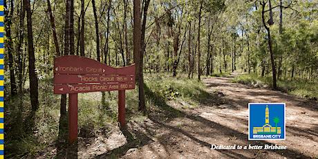Bush Kindy: Scavenger Hunt in Karawatha Forest tickets