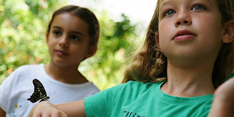 Camp Discovery at Fairchild: Week 6 - Rainforest Exploration tickets