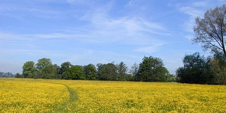 Explore Lugg Meadows Nature Reserve tickets