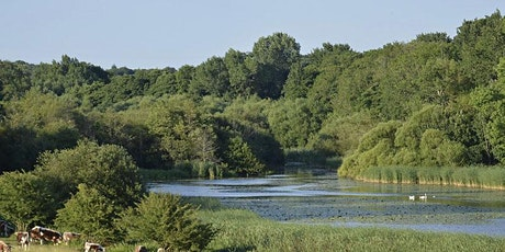 Abingworth: The Knepp Estate Guided Day Walk tickets
