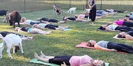 Goat Yoga Spring 2021 tickets