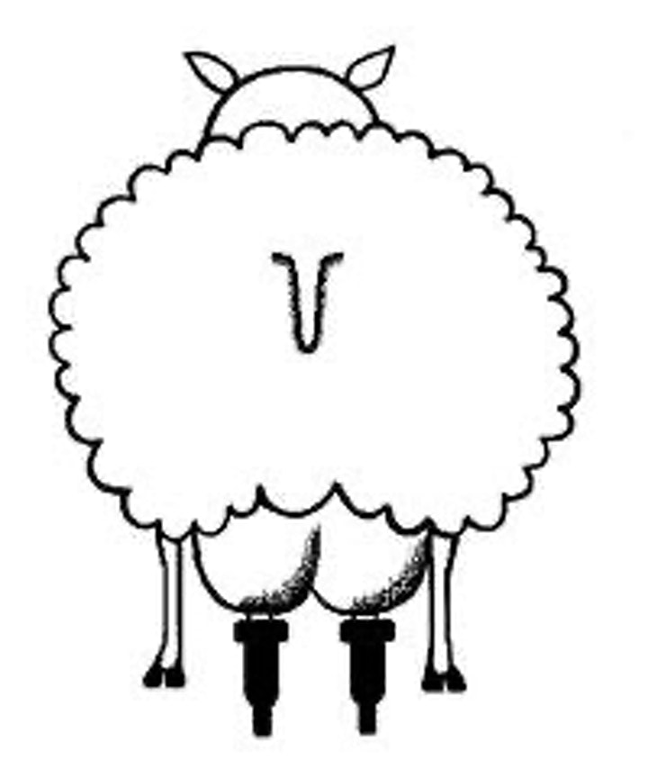 ONLINE TALK What's up with ewe? The rise & fall of English Sheep Milk Chees image