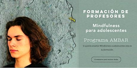 Formación instructores de Mindfulness para adolescentes ingressos