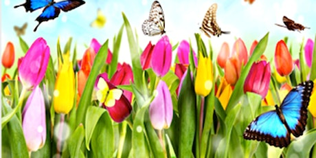 WCR Savannah Spring Basket & Gift Card Auction and Luncheon tickets