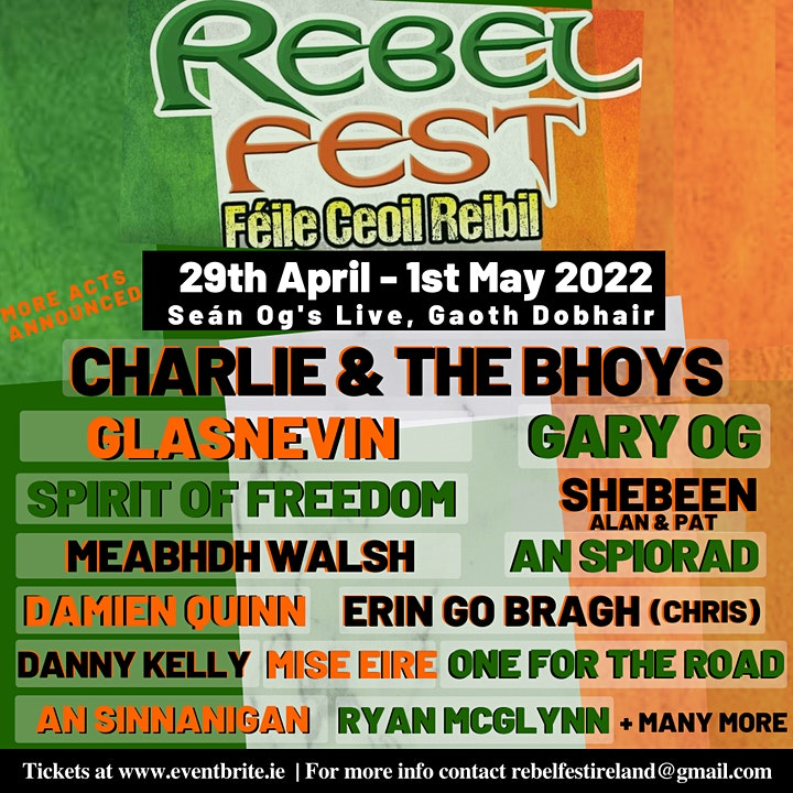 Rebel Fest Donegal 2022 image