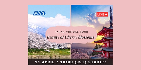 【Virtual Live】Cherry Blossom Viewing - Mt.Fuji and Tohoku Area tickets