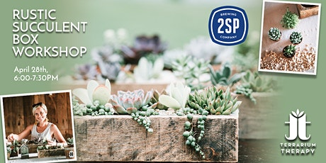 In-Person Rustic Succulent Box Workshop at 2SP Brewing Company tickets