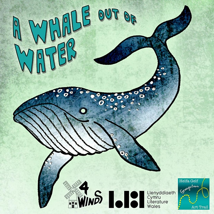 A Whale out of Water image