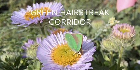 Green Hairstreak Corridor Open House tickets