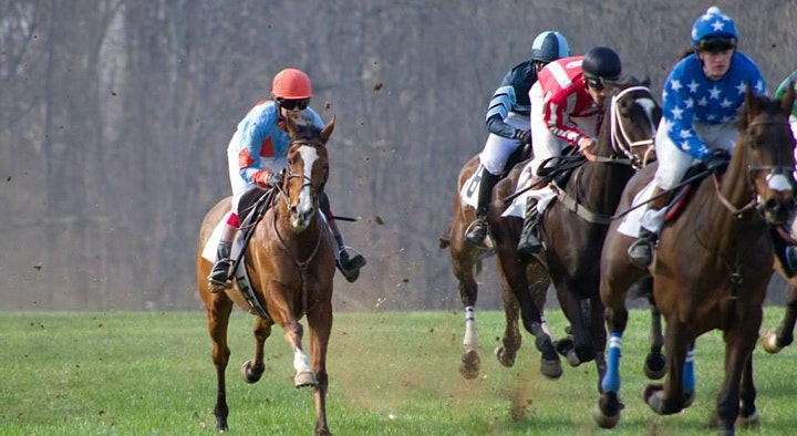 2021 Loudoun Hunt Point To Point 54th Running image