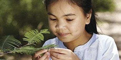 Junior Ranger Flora Explorers - Coolart Homestead and Wetlands tickets