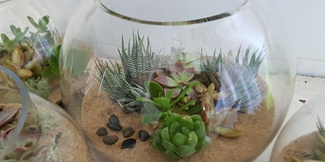 Maing Terrariums tickets