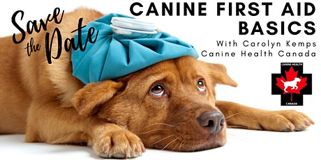 AFB  Webinar Series -  Basic Canine First Aid with Carolyn Kemps tickets