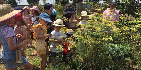 MINI FARMERS - Term 2 Thursdays (More On Bees) tickets