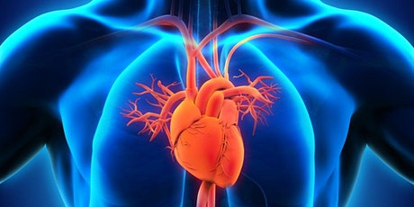 31st International Conference on Cardiology and Cardio Care tickets