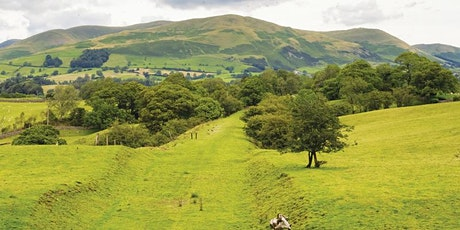 Sedbergh to White Fell Head and The Calf Guided Day Walk tickets