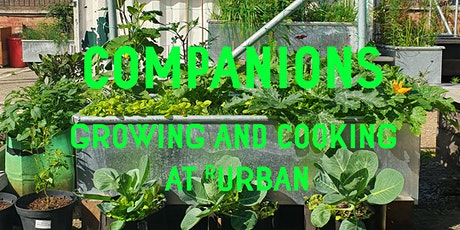 Companions - Growing and Cooking for the Whole Family - at R-Urban Poplar tickets