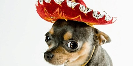 Uno de Mayo! Chihuahua Races at Truck Yard! tickets