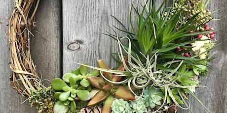 Sips & Stems-Succulent and Airplant Wreath tickets