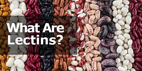 All about Lectins tickets