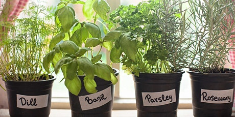 Growing, Using, and Preserving Herbs tickets