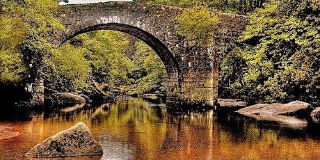 Pi Singles Dartmoor  Bluebell Walk tickets
