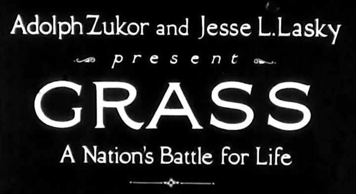 Image pour Trésors du doc • Grass