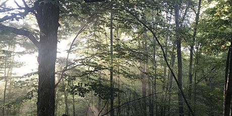 Green Drinks–the Basics of Forest Carbon Management for Landowners tickets
