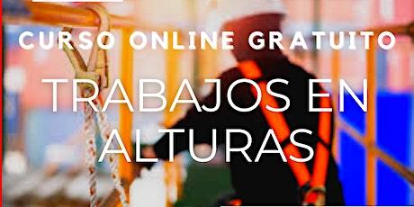 """Curso Gratuito Perú """"Trabajos en Alturas"""" entradas"""