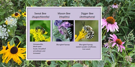 Pollinator Plants by Plant Community tickets