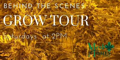 DTLA Tour (Behind the Scenes Grow Tour + Dispensary) tickets