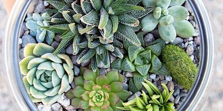 Smitten with Succulents: A Hands-on Terrarium Workshop tickets