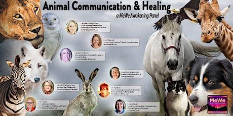 Animal Communication & Healing, a Free MeWe Awakening Panel tickets