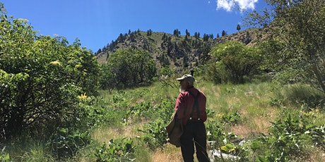 Plant Walk & Wildcrafting / Foraging Workshop - Spokane, WA tickets
