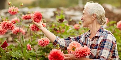 Seniors Festival 2021 - Seniors Garden Workshop tickets