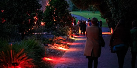 Botanica Lumina - Botanic Garden by Night tickets
