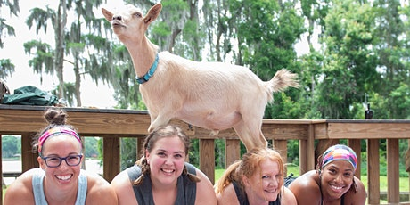 Goat Yoga Tampa plus free drink! In the Loop Brewing, Land O Lakes; 4/25/21 tickets