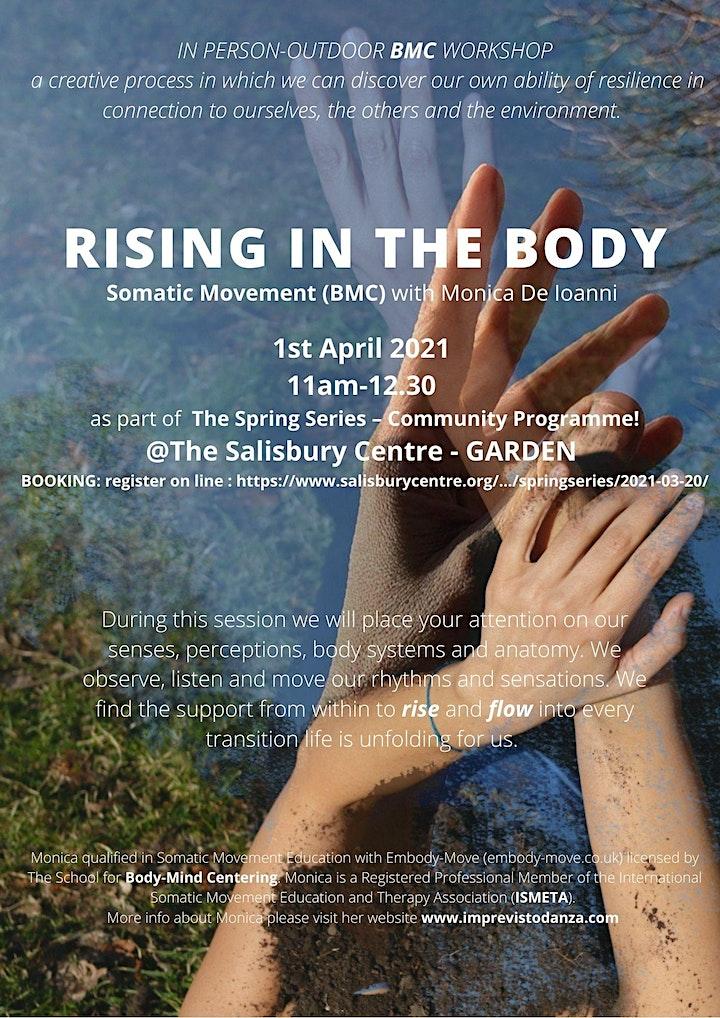 Rising in the Body Through movement (BMC) - Outdoor Class image